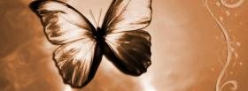 free great butterfly nature facebook cover