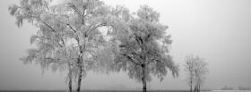 free iced trees nature facebook cover