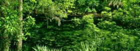 free green woods nature facebook cover
