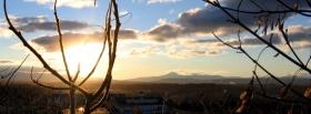 free branches and sunlight nature facebook cover