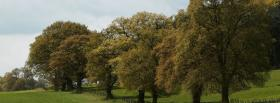free field and forest nature facebook cover