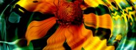 free flower water reflection facebook cover