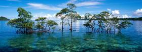 free nicobar islands nature facebook cover