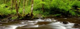free gales creek nature facebook cover
