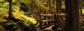 free bridge in woods nature facebook cover