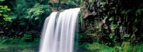 free fall nature facebook cover