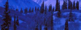 free blue winter nature facebook cover