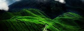 free green path nature facebook cover