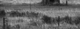 free field black and white facebook cover