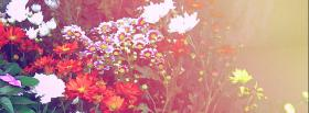 free garden nature facebook cover