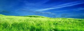 free bright green grass nature facebook cover