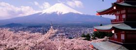 free cherry blossom nature facebook cover