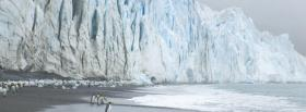 free glacier and penguins nature facebook cover