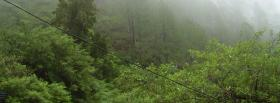 free in the forest nature facebook cover