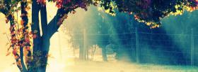 free calm forest nature facebook cover