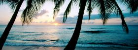 free barbados beach nature facebook cover