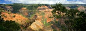 free grand canyon trees nature facebook cover