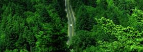 free huge forest and road facebook cover