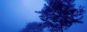 free blue skies and trees facebook cover