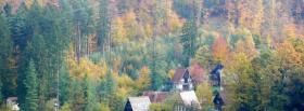 free fall trees nature facebook cover