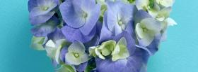 free purple white petals nature facebook cover