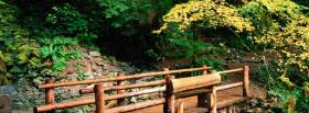 free little bridge in nature facebook cover