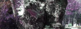 free black and purple nature facebook cover