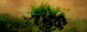 free bush and stars nature facebook cover