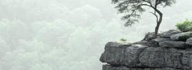 free fall creek falls nature facebook cover