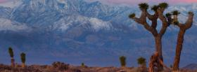free death valley nature facebook cover