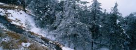 free hill of winter trees facebook cover