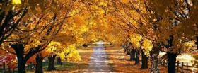free path in forest nature facebook cover