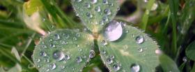 free rain drops nature facebook cover
