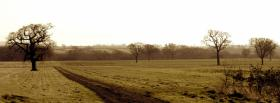 free trees and lanscape nature facebook cover