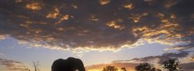 free african elephant clouds nature facebook cover