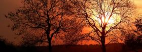 free trees sunset nature facebook cover