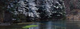 free pine trees nature facebook cover