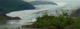 free snow and plants nature facebook cover
