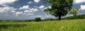free tree landscape nature facebook cover