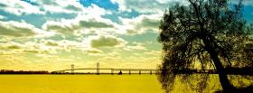 free tree bridge nature facebook cover