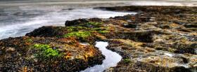 free trail in water nature facebook cover