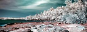 free white rocks and trees facebook cover