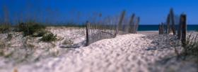 free shell island nature facebook cover
