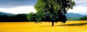 free tree scenery nature facebook cover