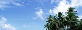 free palms and sky nature facebook cover