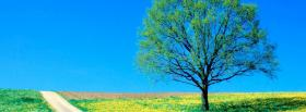 free tree and trail nature facebook cover