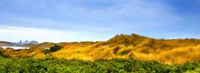 free plant field nature facebook cover