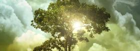 free tree of life nature facebook cover