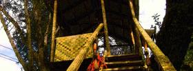 free tree house nature facebook cover