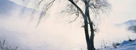 free tree on winter nature facebook cover